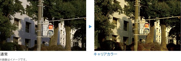 http://nankaidou-opt.co.jp/120703_careercolor.jpg