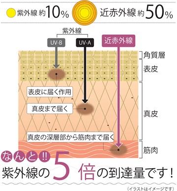http://nankaidou-opt.co.jp/upload/esc-img4.jpg